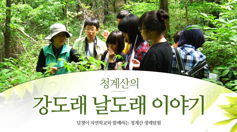 담쟁이자연_메인