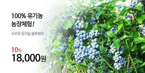 banner_m1_수우원블루베리