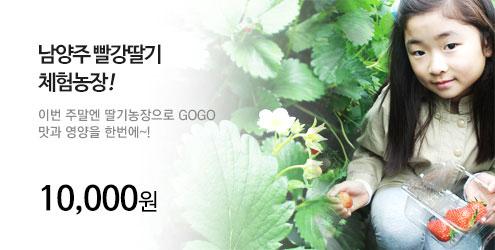 남양주빨강딸기체험농장_수원_banner_m1